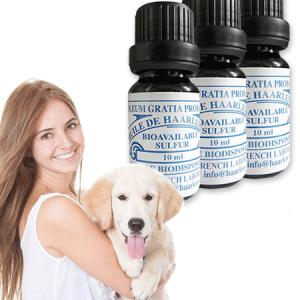 3 Flaschen 10ml für Haustiere